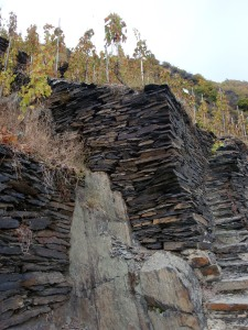 Slate, the typical that allows riesling to show what it's capable of